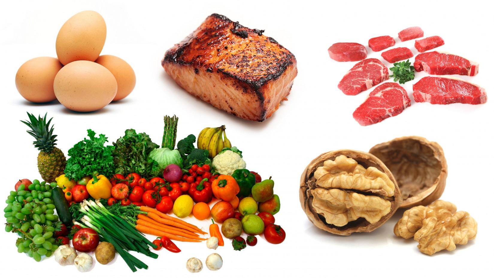 dieta paleolitica per atleti pdf